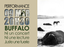 7.Buffalo ter